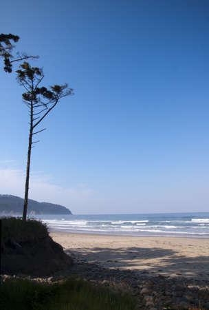 capes: the Beach at Cape Kiwanda Oregon USA Stock Photo