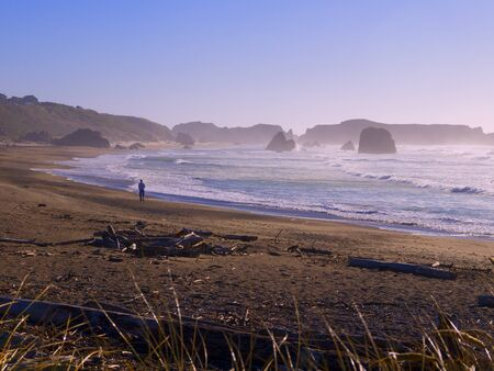 capes: the Coast of Oregon Near Coos Bay USA