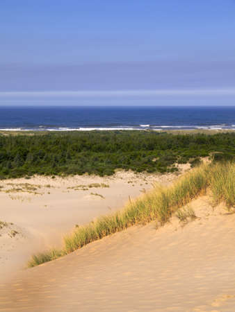 capes: Sand dunes on the Oregon Coast USA Stock Photo