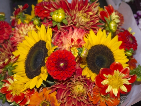 klondyke: Flowers in Pike Place Farmers Market,Seattle ,Washington State USA Stock Photo