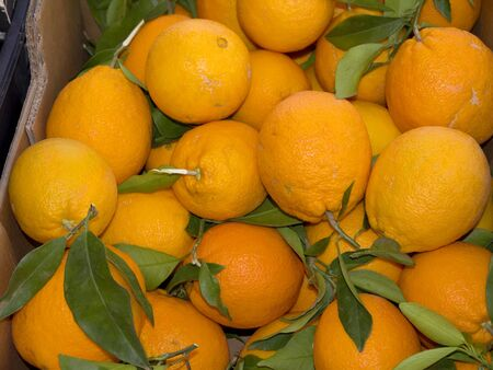 burriana beach: Oranges on Market in nerja Spain