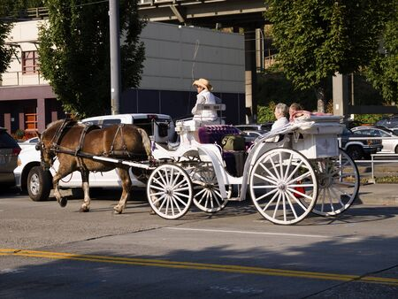 klondyke: Carriage Ride  around Seattle Washington USA
