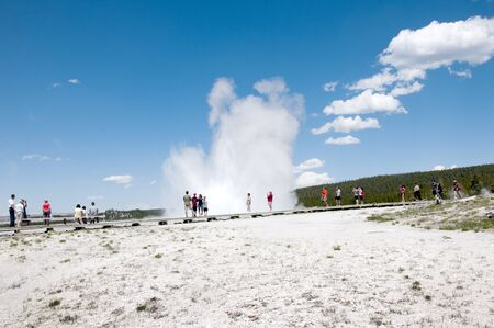 Geyser in Yellowstone National Park USA