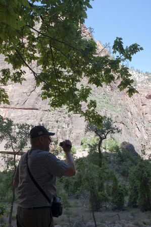 Designated in 1919, Zion National Park is Utahs oldest national park