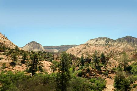 Designated in 1919, Zion National Park is Utah