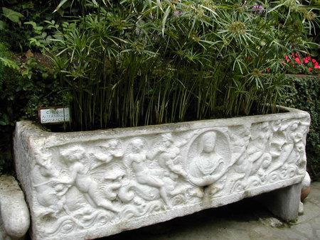Garden tub on the island of Capri Italy