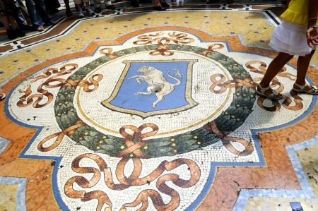 reputed: Floor of the Galleria Vittorio Emanuele (reputed to be the world