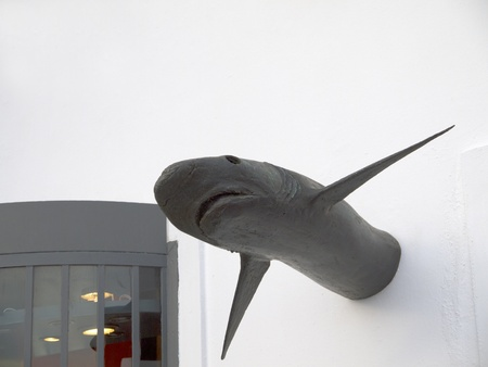 fira: Shark Sculpture in Fira on the island of Santorini Greece