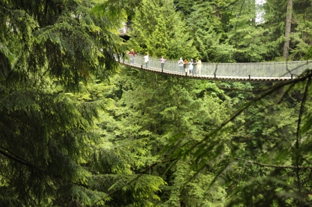 suspension: The Capilano Suspension Bridge in North Vancouver Canada