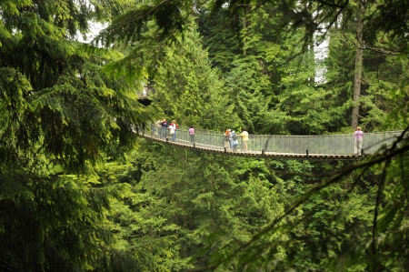 The Capilano Suspension Bridge is a simple suspension bridge crossing the Capilano River in the District of North Vancouver, British Columbia, Canada.