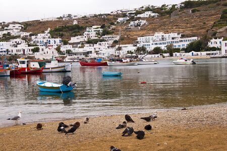 chora: La playa en Chora la ciudad principal en la isla de Mykonos en Grecia