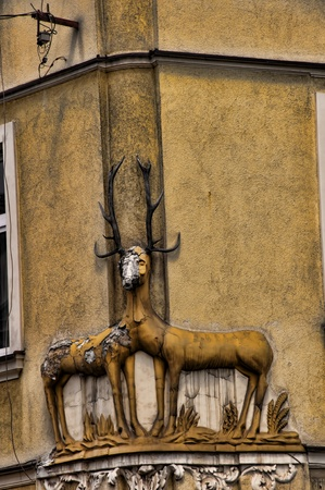 portcullis: Stag on Street Corner a Cracovia in Polonia