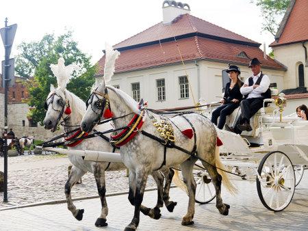 portcullis: Trasporto giro per la citt� di Cracovia in Polonia