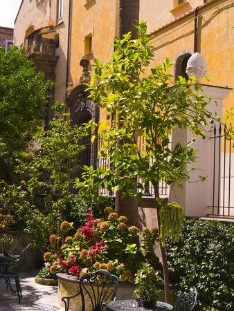 Garden in Sorrento Italy photo