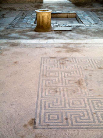 Mosaic Floor in a beautiful villa in the once buried city