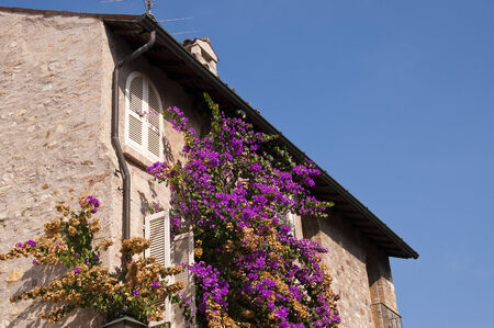 maderno: Flower covered House in Sirmione on Lake Garda Italy
