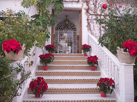 Beautiful Staircase to a house in Nerja Andalucia Spain