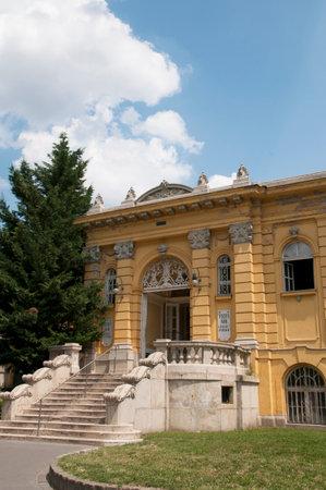 szechenyi: Szechenyi Gyogyfurdo Thermal Baths in the city Park