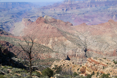 View from the South Rim of the Grand Canyon Arizona USA photo