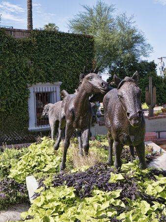 scottsdale: Statue of a group of Wild Horses running together in Scottsdale Arizona USA