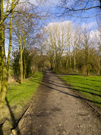 copse: Early Spring on Country Track in Burnley Lancashire Stock Photo
