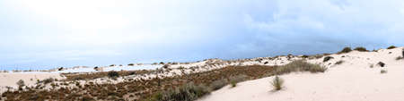white sands national monument: Panorama of The Dunes of the White Sands National Monument in New Mexico USA Stock Photo