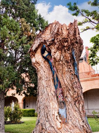 教会のサン Felipe ・ デ ・ ネーリ アルバカーキ ニュー メキシコ米国での敷地内の中のマドンナとツリー