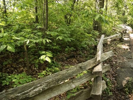 brenda kean: Babcock State Park West Virginia USA Stock Photo