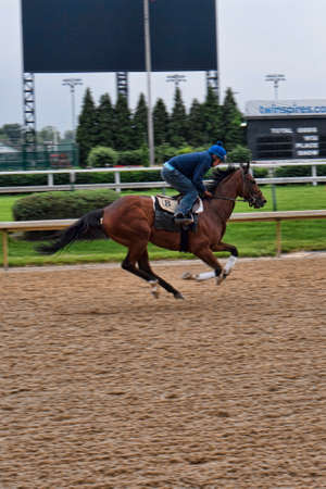 kentucky derby: Exercising horses at Churchill Downs home of the Kentucky Derby in Louisville USA