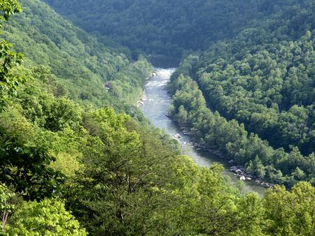 west virginia trees: New River in Babcock State Park West Virginia USA
