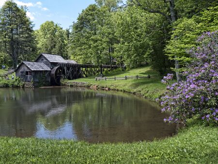 grist: Mabry Mill was a grist mill  grinding grain into flour on the Blue Ridge Parkway in Virginia and it is one of the most photographed places in America