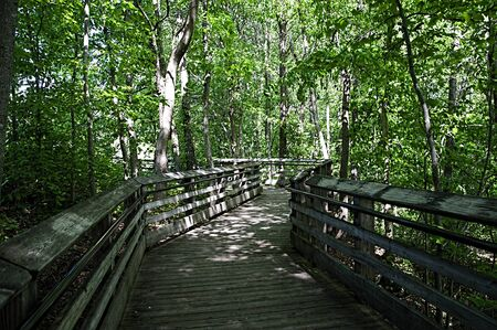 west river: Wooden Walkway to New River Gorge Bridge in Babcock State Park West Virginia USA Stock Photo