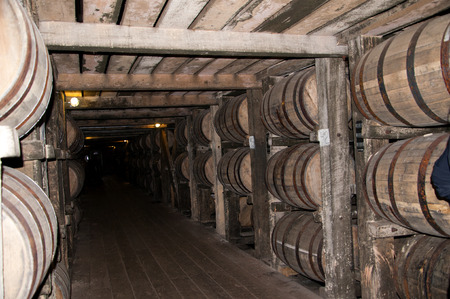 maturing: Barrels maturing Bourbon in Distillery in Bardstown Kentucky USA Editorial