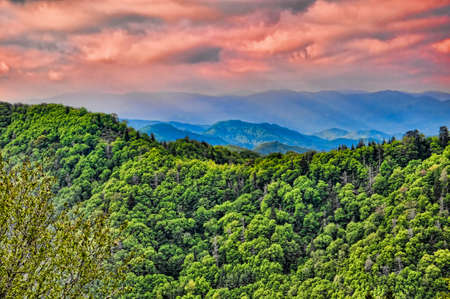 appalachian trail: Part of the Appalachian Trail through the Smokey Mountains USA