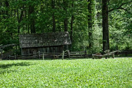 brenda kean: Mabry,mill,grist pond,pool,Blue ridge Parkway,Virginia,USA,flour mill,Brenda Kean,Flowers,