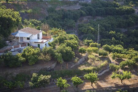 alpujarra: Farm in the Alpujarra Mountains near Frigiliana Spain