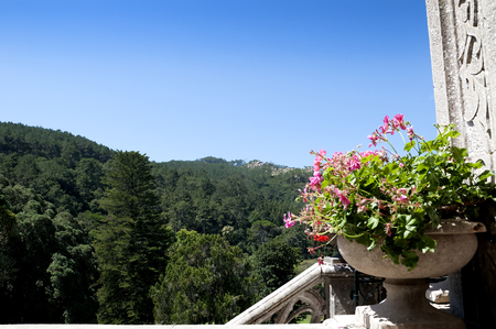 conceived: the Monserrate  and the gardens was conceived by an English architect, James Knowles Jr.as a summer residence for the Cook Family