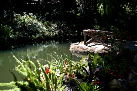 conceived: waterlilies at the Monserrate  and the gardens was conceived by an English architect, James Knowles Jr.as a summer residence for the Cook Family