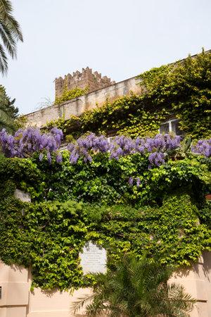 sirens: Old Villa in Marina Grande In Sorrento Italy
