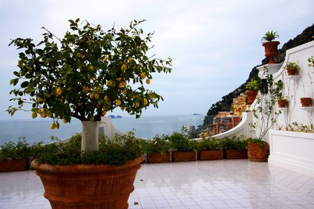 steinbeck: Oranges growing in pot in Positano Italy