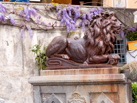 positano: Lion in Positano in Campania Italy