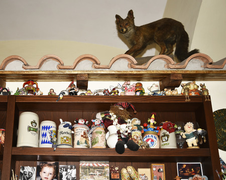Quirky restaurant and beer cellar in Rome Italy