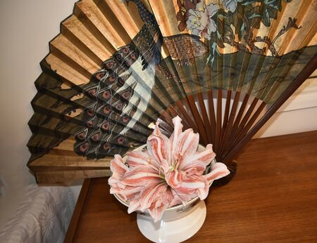 Still Iife with Amaryllis Flower and Chinese Peacock fan Stock Photo
