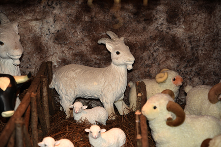 At Christmas time in the village in Nuns Valley the locals make a huge Christmas Crib depicting life on the island of Madeira. They use dressed dolls and model animals in many different and charming tableaux