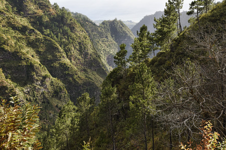 The Nun's Valley in the mountains above Funchal on the island of Madeira in the Atlantic Ocean 版權商用圖片 - 100179371