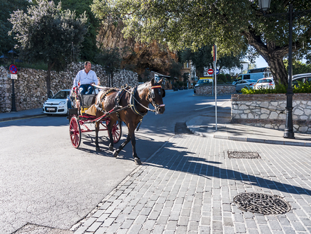 Donkey and horse Taxis take tourists on short rides through the mountain village of Mijas in Andalucia. Authorities are supposed to monitor the animal's welfare