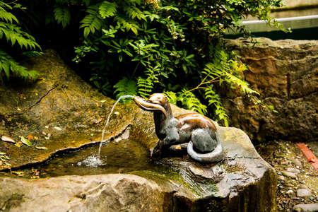Water fountain in the Zoological Garden in Berlin Germany