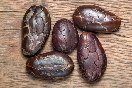 dark roasted and peeled cocoa beans extreme closeup on wood background in Honduras