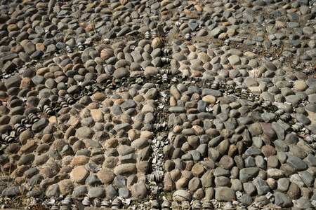 building exteriors: the remnaints of the bone inserts of a colonial cobblestone plaza floor in Casco Viejo Panama