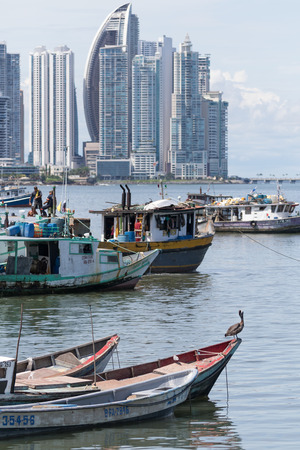 building exteriors: June 15, 2016 Panama City, Panama:  a pelican is standing on a small fishing boat floating on the water by the fish market with the modern downtown highrise buildings in the background